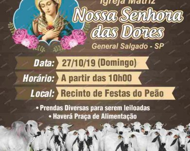 Leilão General Salgado 2019