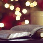 Expresse sua gratidão a Deus através deste versículo da Bíblia